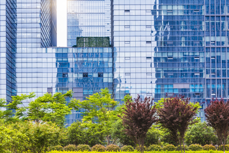 clean office: The background of modern architecture and green plants