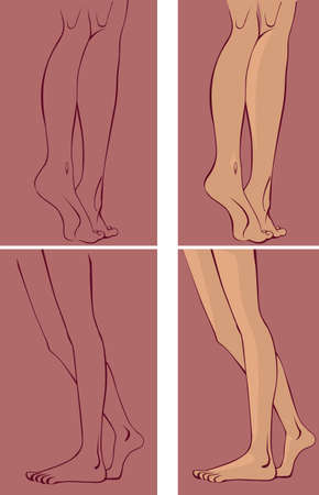 piernas de mujer: dibujo de las piernas, la vista lateral y trasera