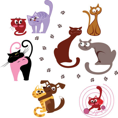 enmity: cats Illustration