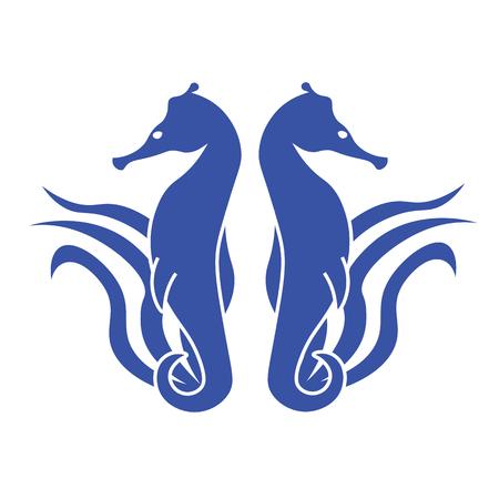 caballo de mar: Dos caballitos de mar azul caballito de mar sobre un fondo de algas