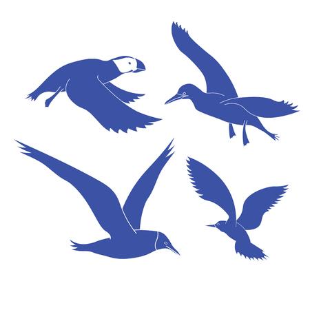 mew: The contour of the sea birds. Blue sea birds in flight