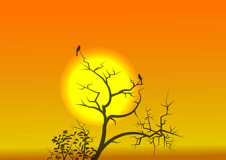 Sunrise and a beautiful golden light. Stock Vector - 112448035