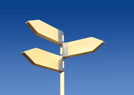 choose a path:  Direction sign(three directions)