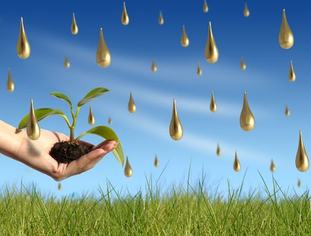 Plant under gold rain. New life concept. Stock Photo - 2207336