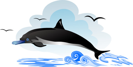 Dolphin jump out of the water in sea Vector