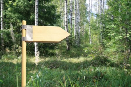 Wooden direction sign in forest. photo