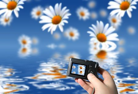 Flower background and digital camera in hand photo