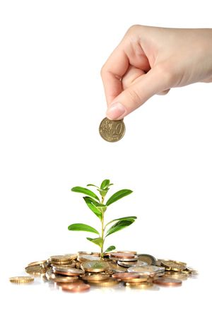 Money and plant. Hand holding euro coin. Stock Photo - 4874823