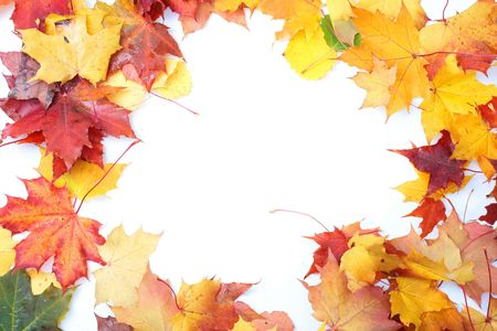 Colorful autumn frame made from leaves, isolated over white background. photo
