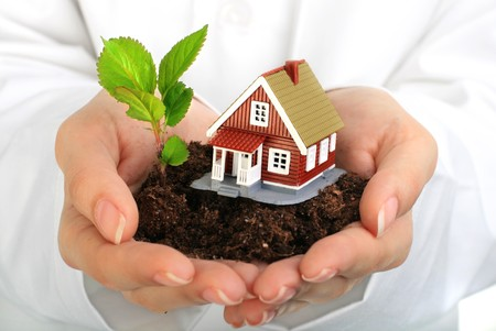 Small house and plant in hands. Isolated over white. photo
