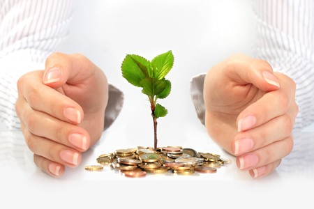 New life. Business concept. Stock Photo - 8192140