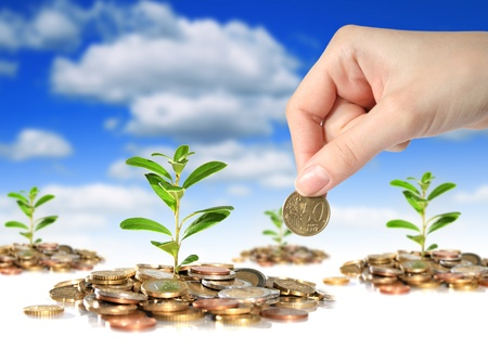 money rain: Plants, coins and hand with coin over sky background. Stock Photo