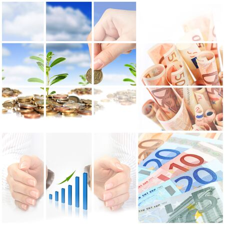 Financial collage. Euro money, business chart and plant.