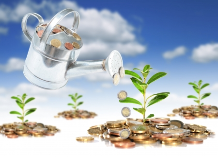 growing plant: Financial concept of successful investment. Business collage. Stock Photo