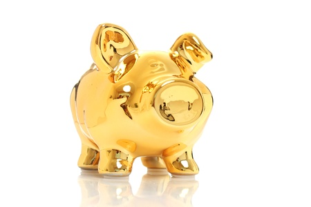 Golden pig isolated over white. Successful investments. photo