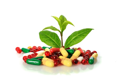 doctor giving pills: Colorful pills and plant