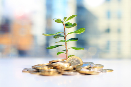 Succesvolle investering Stockfoto