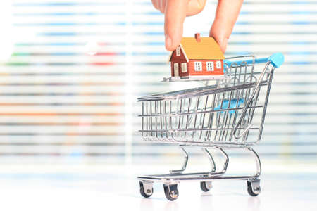 Buy a new house. House and shopping basket.