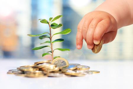 Wachsende Pflanzen und Geld . Erfolg im Geschäft Standard-Bild - 66354250