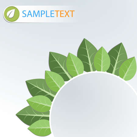 Modern green template  Vector illustration