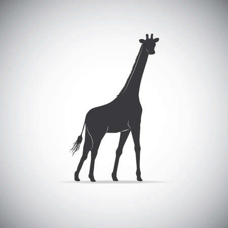camelopardalis: Silhouette of a giraffe Illustration