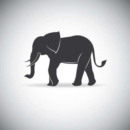 Het silhouet van olifanten