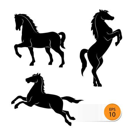 cavallo che salta: Horse silhouette su uno sfondo bianco