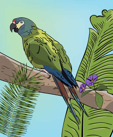 Green macaw parrot on branch. Vector Illustration.