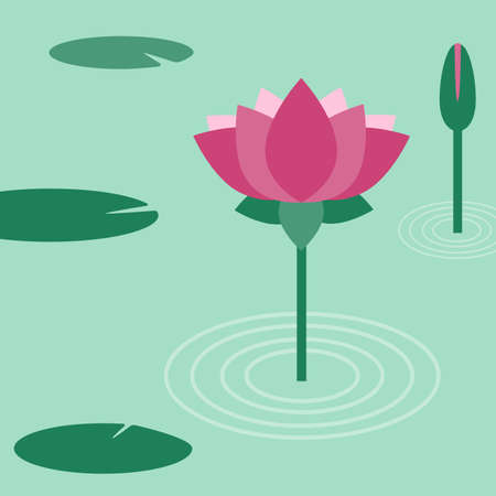 Lotus flower. Vector flat illustration.  イラスト・ベクター素材