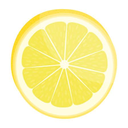 Lemon slice. Citrus fruit. Isolated on white. Vector illustration.