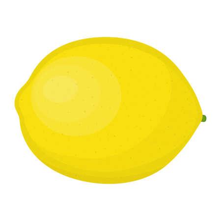 Yellow lemon. Citrus fruit. Isolated on white. Vector illustration.  イラスト・ベクター素材