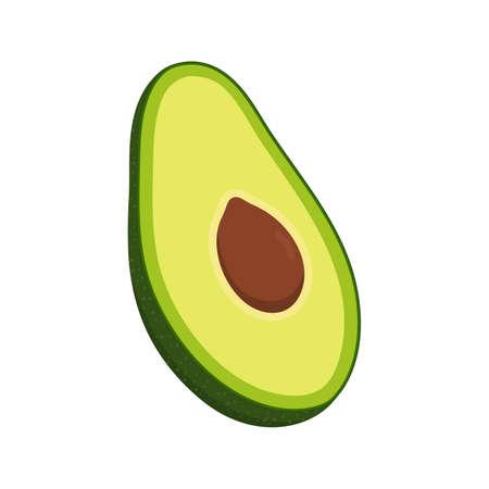 Slice of avocado fruit. Isolated on white background. Vector illustration.