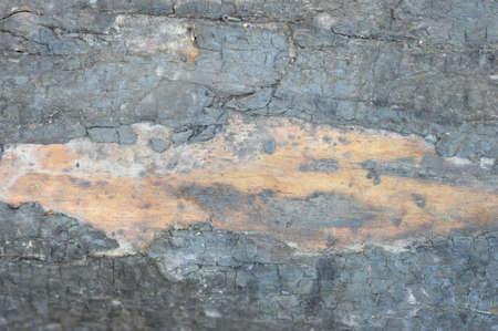 quemado: la textura de la madera quemada Foto de archivo