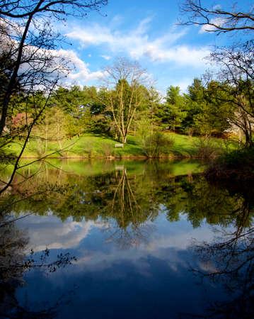 Springtime Pond Reflection photo