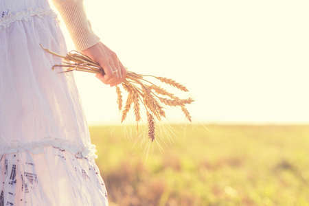 Young girl walking in a field with ears in the hand Stock Photo