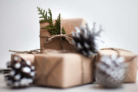 thuja: Present box with thuja and cone winter style Stock Photo
