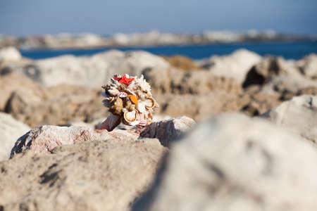 Handmade bouquet of seashells on the rocky seashore