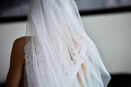 Bride's beautiful back in fantastic white wedding dress