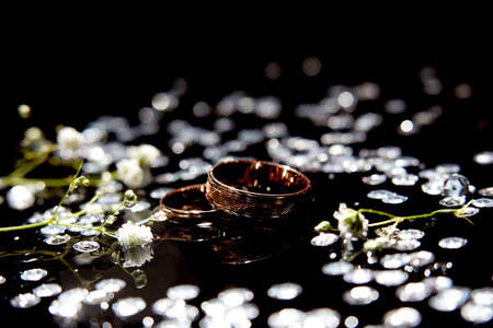 Golden wedding rings for bride and groom amond splashes of water