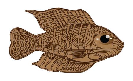 bloat: Beautiful fish cartoon