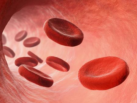 vasos sanguineos: Los gl�bulos rojos en vista macro torrente sangu�neo. Medicina y biolog�a ilustraci�n investigaci�n cient�fica.