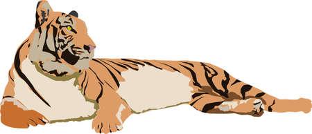 Tiger icon. Ilustrace