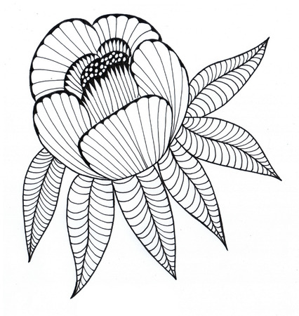 peony black: Peony graphic drawing Liner black and white drawing