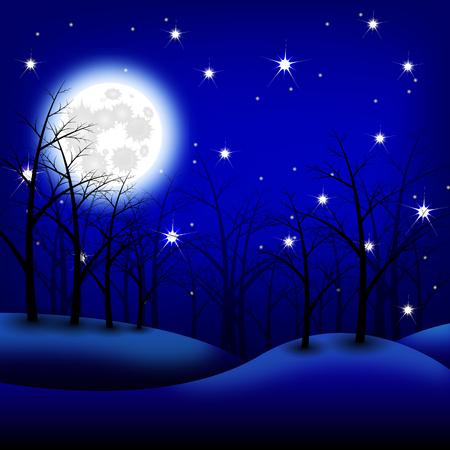 night moon: Moon night landscape. illustration. Night forest
