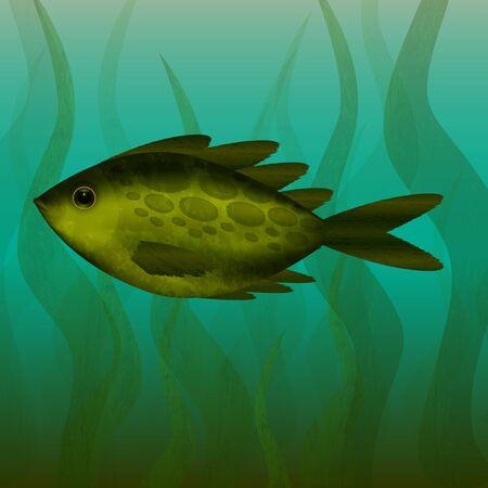 River fish - Under the water - Underwater plants - Turbid water - Vector illustration.