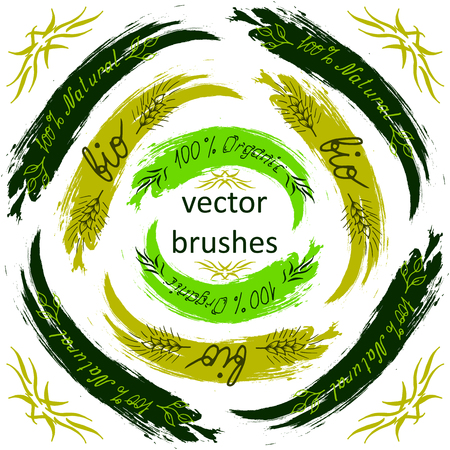 raw food: Vector brush - Bio, Organic, Natural. Hand lettering. For vegetarian food and raw food diets. Eco friendly concept for stickers, banners, cards, advertisement. Vector ecology nature design. Illustration