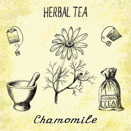 chamomile tea: Chamomile herbal tea. Set of elements on the basis hand pencil drawings. Herb chamomile, tea bag, mortar and pestle, textile bag. For labeling, packaging, printed products