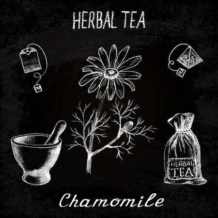 chamomile tea: Chamomile herbal tea. Chalk board set of elements on the basis hand pencil drawings. Herb chamomile, tea bag, mortar and pestle, textile bag. For labeling, packaging, printed products