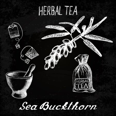 Sea buckthorn herbal tea. Chalk board set of elements on the basis hand pencil drawings. Sea buckthorn, tea bag, mortar and pestle, textile bag. For labeling, packaging, printed products