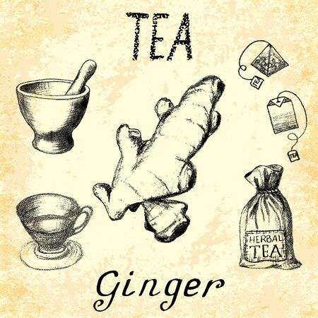 labeling: Ginger herbal tea. Set of elements on the basis hand pencil drawings. Ginger root, tea bag, mortar and pestle, textile bag, cup. For labeling, packaging, printed products Illustration